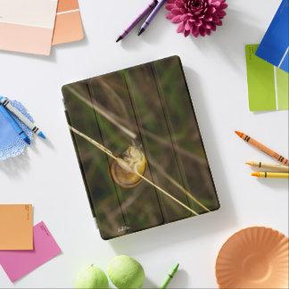 Capa Smart Para iPad fotografia de insecto numa casca sobre uma erva