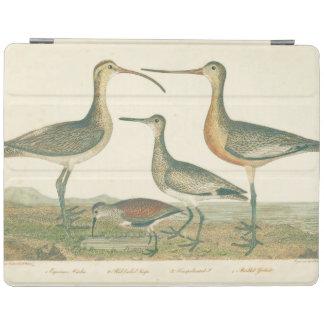 Capa Smart Para iPad Ilustração antiga do pântano dos pássaros de água