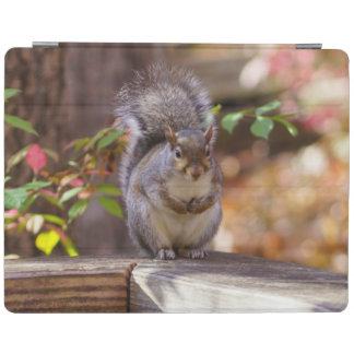 Capa Smart Para iPad Implorando o esquilo