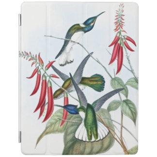 Capa Smart Para iPad Os animais selvagens dos pássaros do colibri