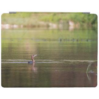 Capa Smart Para iPad Pássaro do Cormorant que nada pacificamente