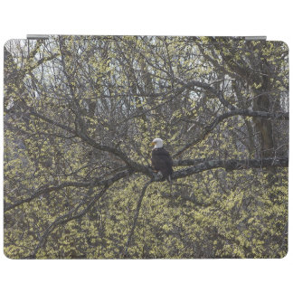 Capa Smart Para iPad Vigia de Eagle Painterly