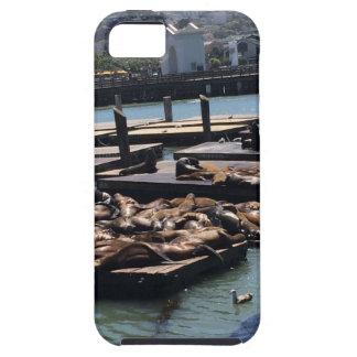 Capa Tough Para iPhone 5 Cais 39 San Francisco Califórnia