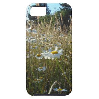 Capa Tough Para iPhone 5 Campo das margaridas