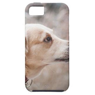 Capa Tough Para iPhone 5 cão