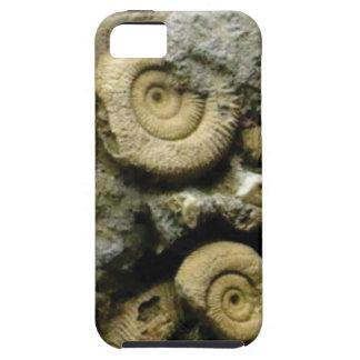 Capa Tough Para iPhone 5 círculos de caracóis fósseis