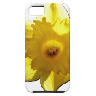 Capa Tough Para iPhone 5 Daffodil 1,0 da trombeta amarela