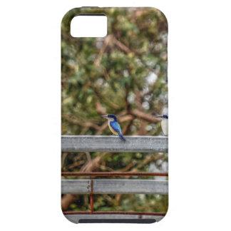 CAPA TOUGH PARA iPhone 5 EFEITOS AZUIS DA ARTE DE QUEENSLAND AUSTRÁLIA DO