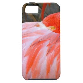 Capa Tough Para iPhone 5 Flamingo cor-de-rosa do sono