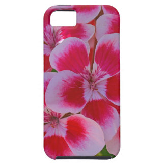 Capa Tough Para iPhone 5 Flores cor-de-rosa do primavera
