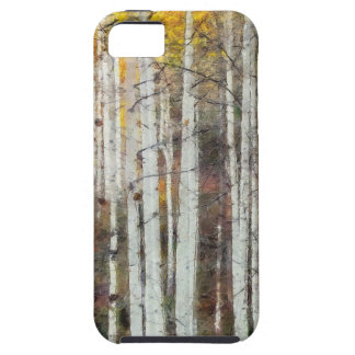 Capa Tough Para iPhone 5 Floresta enevoada do vidoeiro