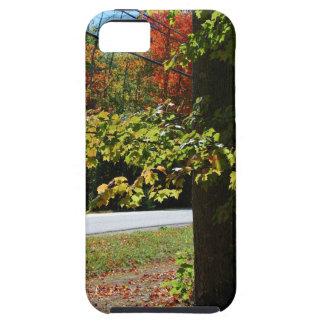 Capa Tough Para iPhone 5 Folhas de outono em Maine