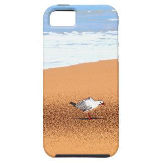 CAPA TOUGH PARA iPhone 5 GAIVOTA NA PRAIA QUEENSLAND AUSTRÁLIA