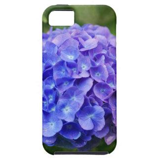 Capa Tough Para iPhone 5 Hydrangea francês (macrophylla do Hydrangea)