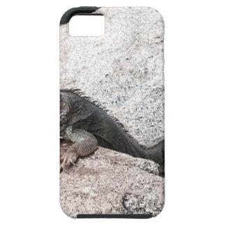 Capa Tough Para iPhone 5 Iguana selvagem