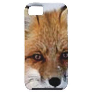 Capa Tough Para iPhone 5 imagem extravagante da raposa