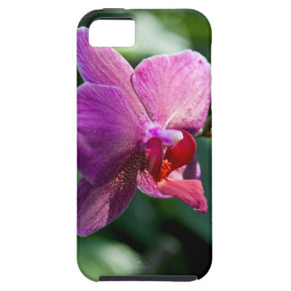 Capa Tough Para iPhone 5 Orquídea mágica