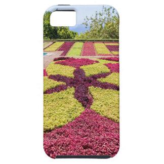 Capa Tough Para iPhone 5 Padrões e formas coloridos bonitos no jardim