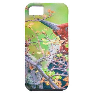 Capa Tough Para iPhone 5 Pica-pau em Pecking da floresta