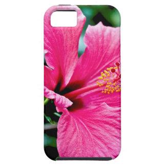 Capa Tough Para iPhone 5 Pink hibisco