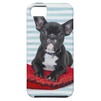 Capa Tough Para iPhone 5 Retrato do filhote de cachorro do buldogue francês