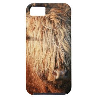 Capa Tough Para iPhone 5 Scottish país de alto Cow - Scotland