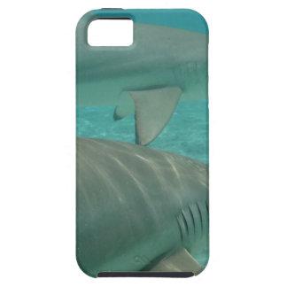 Capa Tough Para iPhone 5 shark