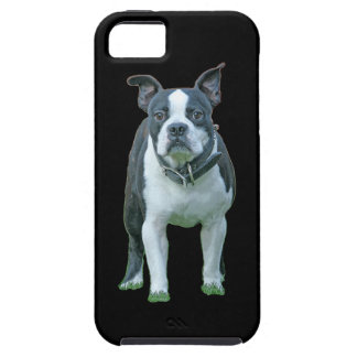 Capa Tough Para iPhone 5 Terrier 1b de Boston