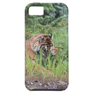 Capa Tough Para iPhone 5 Tigeriffic