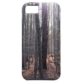 Capa Tough Para iPhone 5 Uma floresta da faia na queda