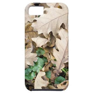 Capa Tough Para iPhone 5 Vista superior das folhas caídas do carvalho