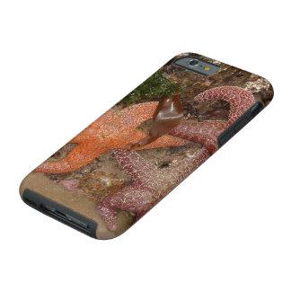 Capa Tough Para iPhone 6 A estrela do mar/estrelas de mar no canhão
