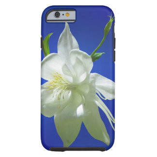 Capa Tough Para iPhone 6 Aquilégia branco no azul