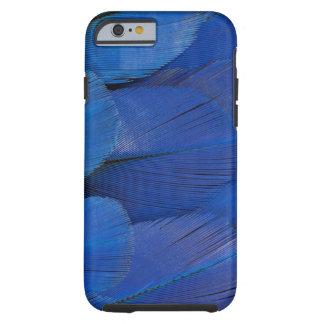Capa Tough Para iPhone 6 Design azul da pena do Macaw do jacinto