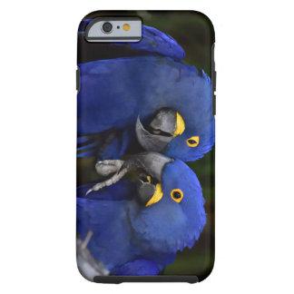 Capa Tough Para iPhone 6 Pássaros do amor (caso)