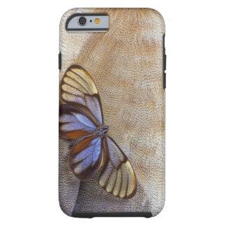 Capa Tough Para iPhone 6 pena egípcia do ganso da borboleta da Vidro-asa