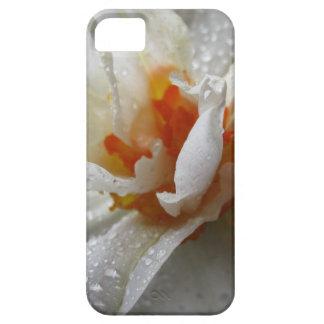 capas de iphone--Arte de Digitas floral Capa Para iPhone 5