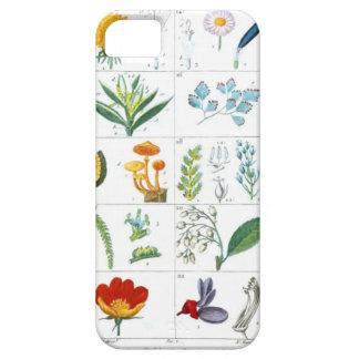 Capas de iphone botânicas do impressão do vintage capa barely there para iPhone 5