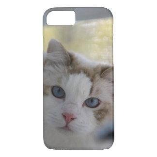 Capas de iphone brancas Eyed azul do gato