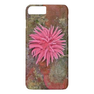 Capas de iphone cor-de-rosa de Hopkins Nudibranch