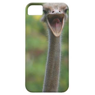 Capas de iphone da avestruz capa para iPhone 5