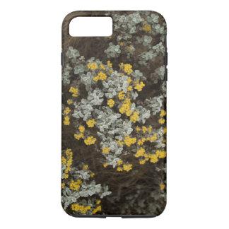 Capas de iphone da flor da sobremesa