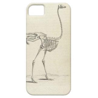Capas de iphone do esqueleto do Emu