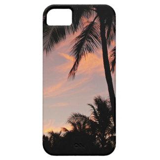 Capas de iphone do por do sol