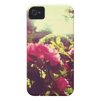 Capas de iphone do rosa da flor do vintage capinhas iPhone 4
