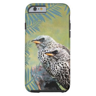 Capas de iphone dos pássaros