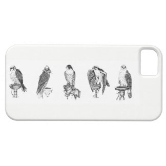 Capas de iphone dos retratos da falcoaria