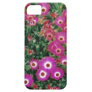 capas de iphone florais capa para iPhone 5