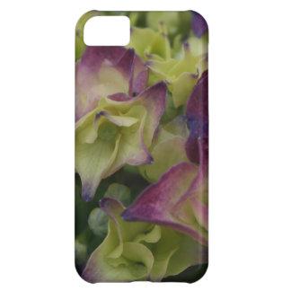 Capas de iphone florais do Hydrangea multicolorido Capa Para iPhone 5C