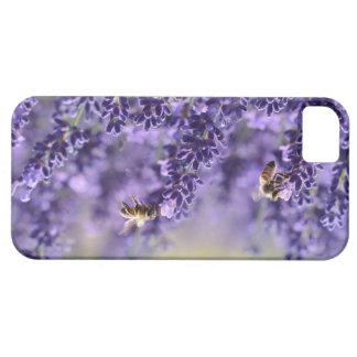 Capas de iphone roxas da lavanda e das abelhas